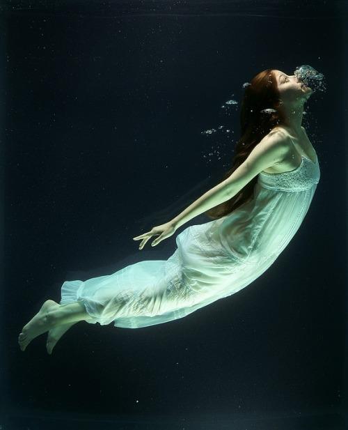under-water-1819586_960_720